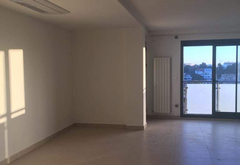 Location Appartement F3+Séjour Hydra Alger